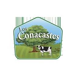 Los Conacastes